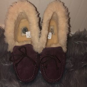 UGG MOCCASINS PLUSH AND WOOL SIZE 7 BURGUNDY NEW!